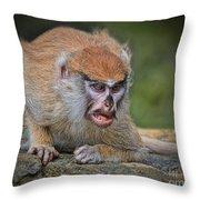 Baby Patas Monkey On Guard  Throw Pillow