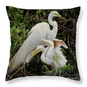 Baby Pink Wings Throw Pillow