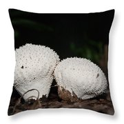 Baby Puffballs Throw Pillow