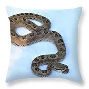Baby Rattler Throw Pillow