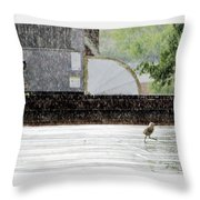 Baby Seagull Running In The Rain Throw Pillow by Bob Orsillo
