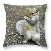 Baby Squirrel Throw Pillow