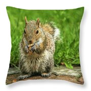 Baby Squirrel's First Peanut Throw Pillow
