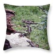 Babycrocs Throw Pillow