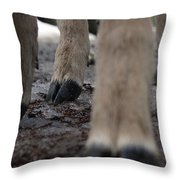 Baby's First Winter Throw Pillow
