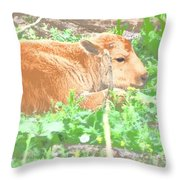 Baby's Home On The Range Throw Pillow