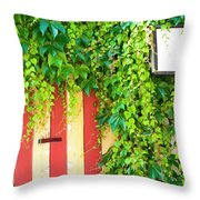 Back Alley Color Throw Pillow