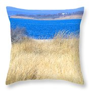 Back Bay I I  Throw Pillow