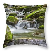 Back Country Stream Throw Pillow