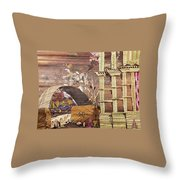 Back Entry Throw Pillow