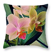 Back For A Second Year Throw Pillow