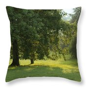 Back From The Meadow Throw Pillow