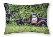 Back In A Field Throw Pillow