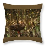 Back In Black Throw Pillow by Sean Green