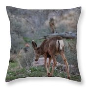Back Into The Woods - 2 Throw Pillow