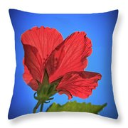 Back Lighting The Red Hibiscus  Throw Pillow
