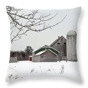 Back Road Find Throw Pillow