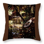 Back Road Finds Throw Pillow