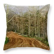 Back Road Home Throw Pillow