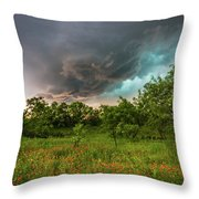 Back To Life - Spring Returns To Western Texas Throw Pillow
