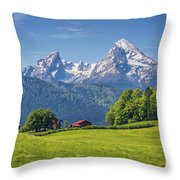 Back To The Roots Throw Pillow