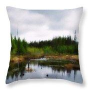 Backcountry Lake - Adirondacks Throw Pillow