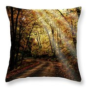 Backcountry Road Throw Pillow