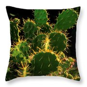 Backlit Cacti Throw Pillow