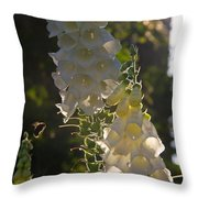 Backlit Foxgloves Throw Pillow