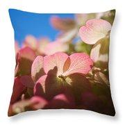 Backlit Hydrangea Throw Pillow