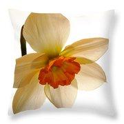 Backlit Jonquil Throw Pillow