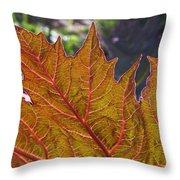 Backlit Leaf 2 Throw Pillow