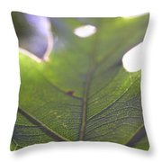 Backlit Leaf Throw Pillow