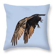 Backlit Osprey Takes Flight Throw Pillow