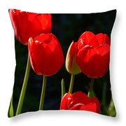 Backlit Red Tulips Throw Pillow
