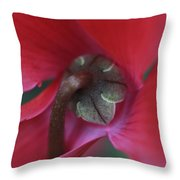 Backside Beauty Throw Pillow