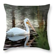 Backwater Serenity Photograph Throw Pillow