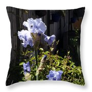 Backyard 1 Throw Pillow