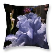 Backyard 2 Throw Pillow