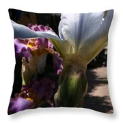 Backyard 4 Throw Pillow