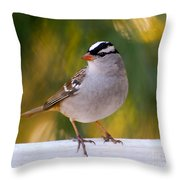 Backyard Bird - White-crowned Sparrow Throw Pillow