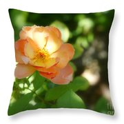 Backyard Boogie Throw Pillow