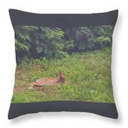 Backyard Bunny Throw Pillow