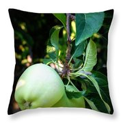Backyard Garden Series - 2 Apples Throw Pillow