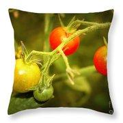 Backyard Garden Series - Cherry Tomatoes Throw Pillow