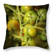 Backyard Garden Series - Green Cherry Tomatoes Throw Pillow