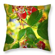 Backyard Garden Series - Sunlight On Raspberries Throw Pillow