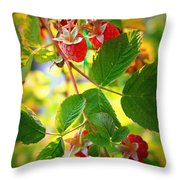 Backyard Garden Series - Sunlight On Raspberries Throw Pillow