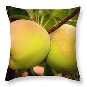 Backyard Garden Series - Two Apples Throw Pillow