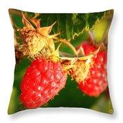 Backyard Garden Series - Two Ripe Raspberries Throw Pillow